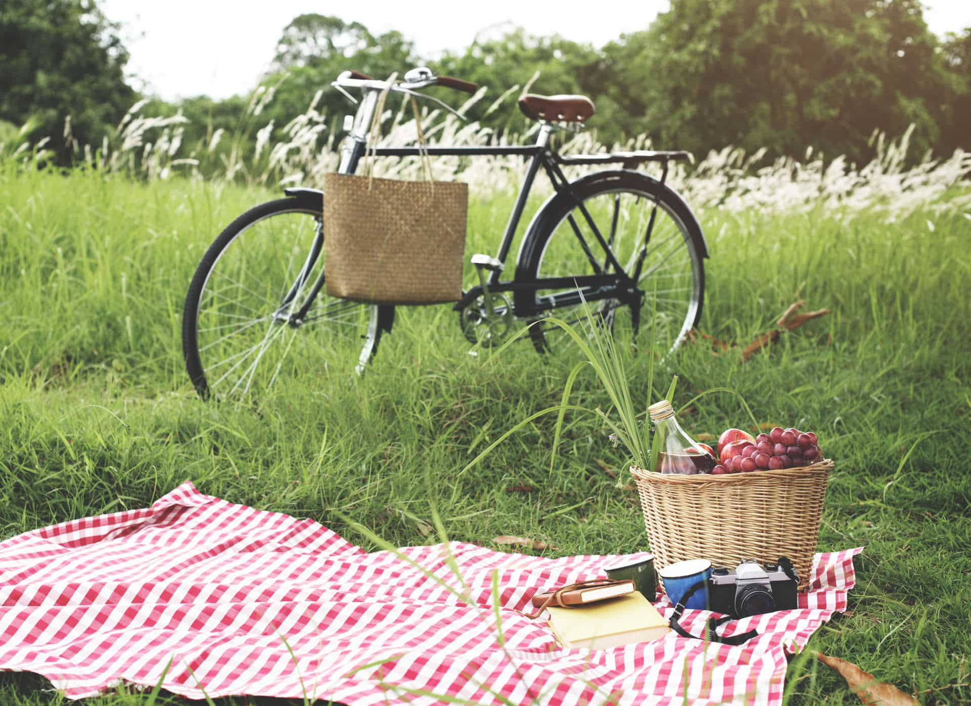 Tulfarris Hotel & Golf Resort Picnic with bicycle at Blessington Lakes